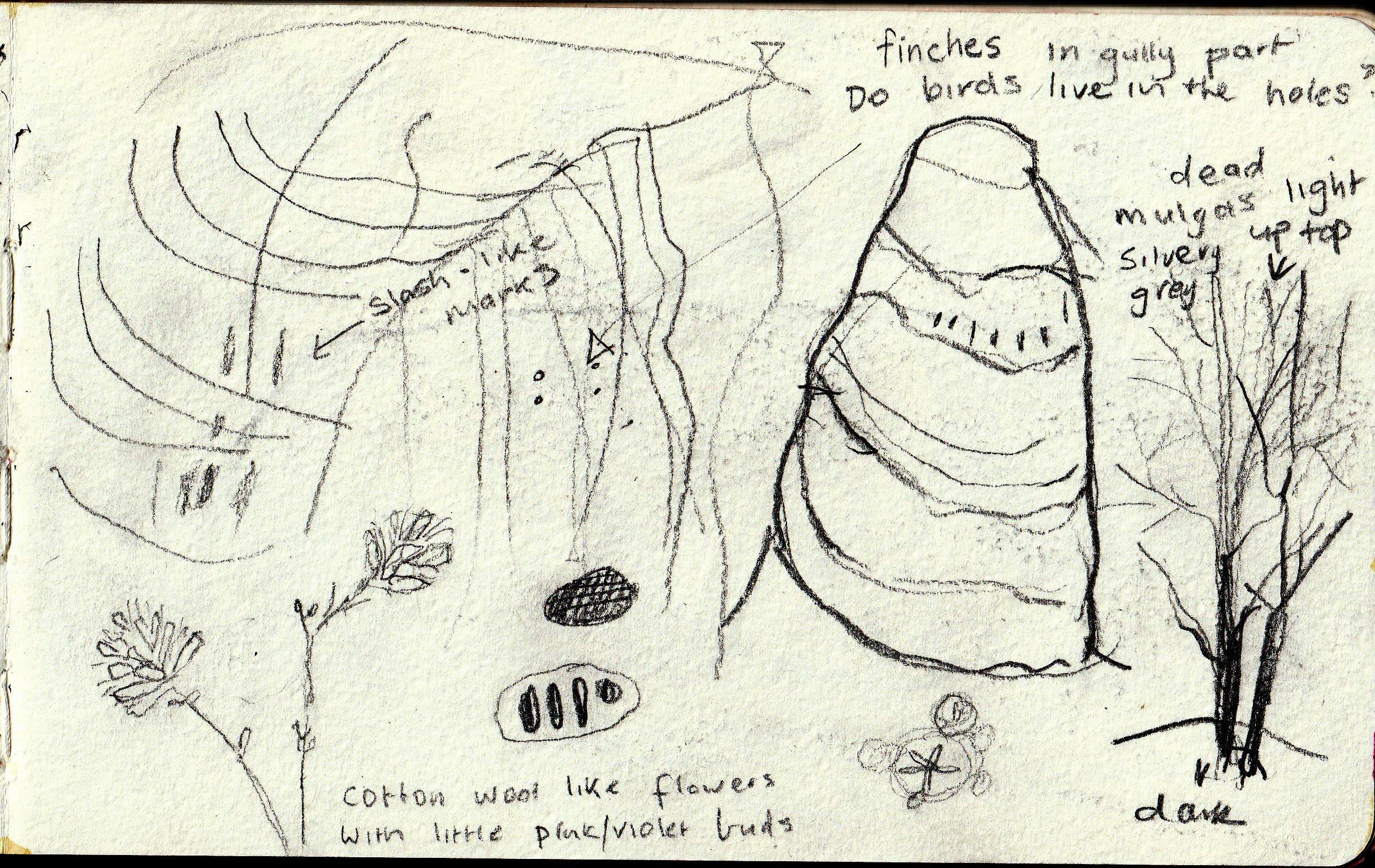 note-book-sketch